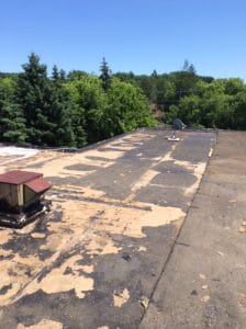 Commercial flat roof in Holland landing