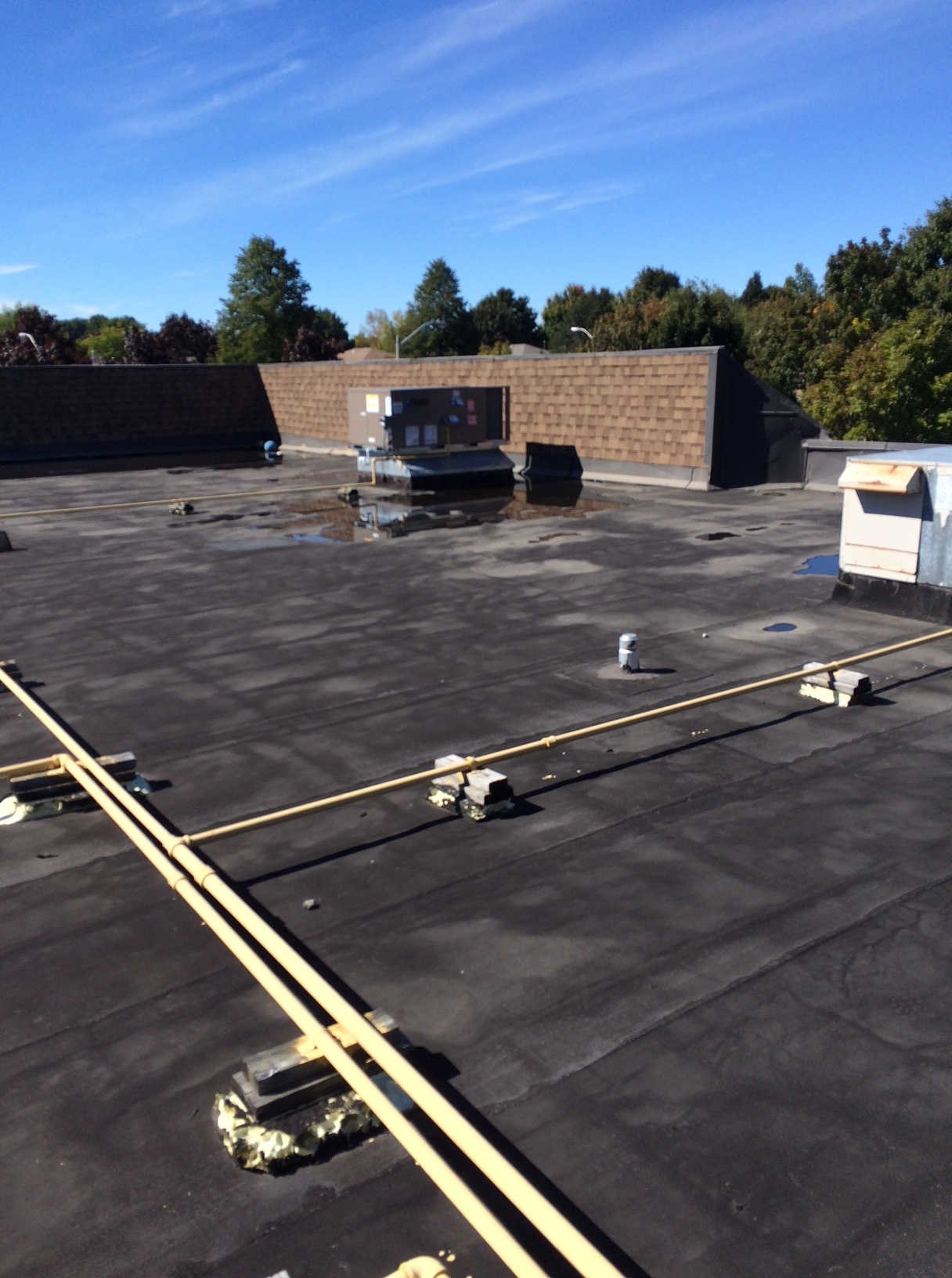 Commercial flat roof repair Ajax