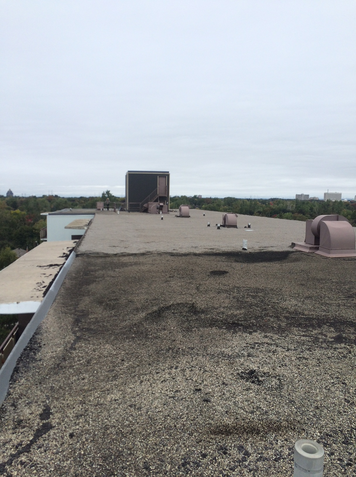 Apartment building flat roof repair