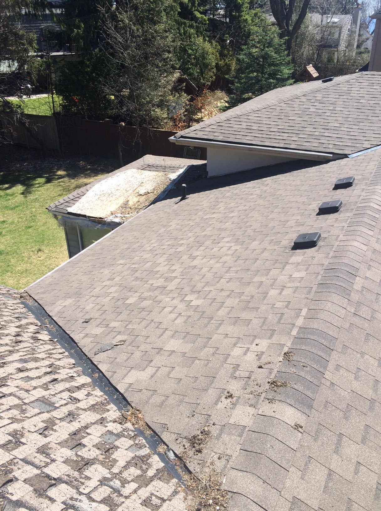Deteriorated asphalt shingles in Scarborough