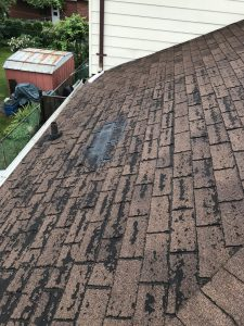 Roof inspection of severely deteriorated roof in Scarborough