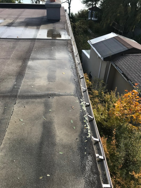 Blistered bitumen membrane on flat roof in Scarborough