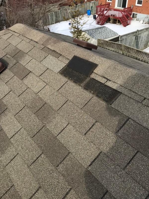 Windstorm damage to asphalt shingles on home in Ajax