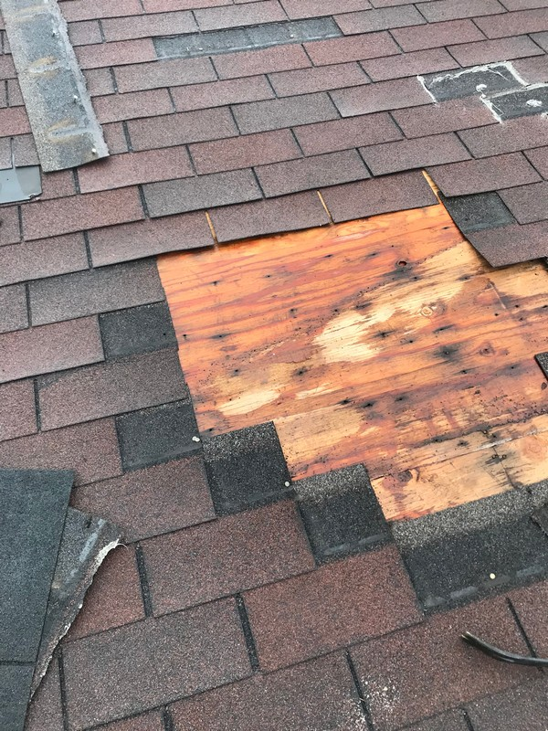 Windstorm damage and exposed plywood on roof in Pickering