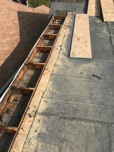 Demolition of water damaged plywood on flat roof in Toronto