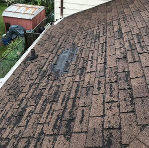 Roof Maintenance & Inspection in Toronto and the GTA