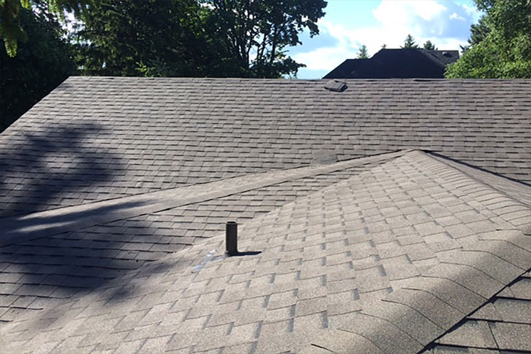 Roof Replacement Services in Scarborough